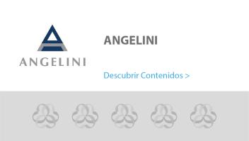 Tarjeta Comunidad Angelini